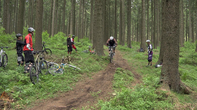 Bikepark Braunlage am Wurmberg | Urlaub an der Nordsee & im Harz ...