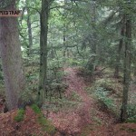 "Der ""Speedtrap"" Trail in Wartenberg"