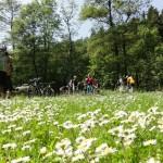 Mountainbiketour im Harz