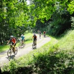 MTB Tour im Harz