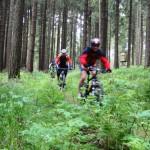 Touren durch den Harz