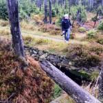 Andi auf Motivsuche im Harz