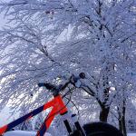 snowride MTB