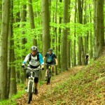 mtb trails südharz