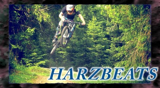harzbeats mit trailtech