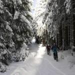 Der Schnee hat den Harz fest im Griff.