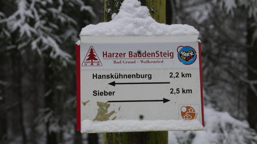 Der Harzer Baudensteig